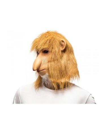 Małpa nosacz polski